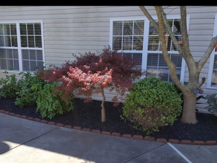 Landscaping & Concrete Contractor | Fort Mill, SC | Powell Concrete on lumber yard designs, brick yard designs, dirt yard designs, wrought iron yard designs, mulch yard designs, concrete design ideas, concrete landscape design, slate yard designs, bark yard designs, gravel yard designs, wood yard designs, christmas yard designs, sand yard designs, paver yard designs, water yard designs, landscape yard designs, grass yard designs, stone yard designs, log yard designs, metal yard designs,